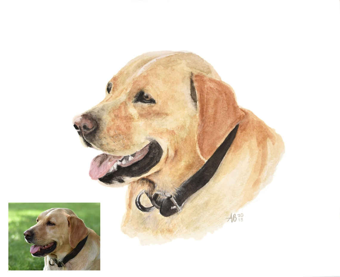 Custom Pet Painting from Photo Custom Pet Portrait Hand image 1
