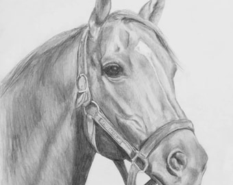 SECRETARIAT Portrait Art Print