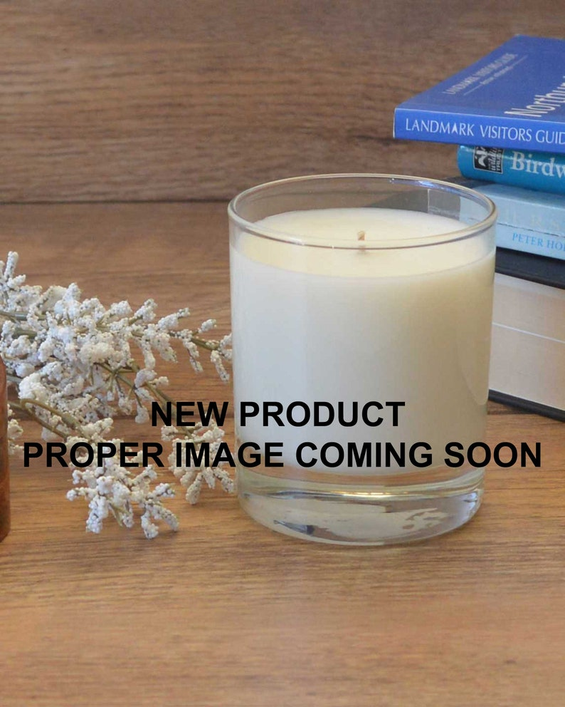 Amber & Sweet Orange  Scented Candle  Soy Candle  White image 0