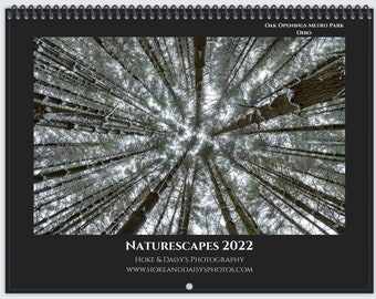 """2022 Wall Calendar / Naturescapes / Spiral Bound Wall-Mounted Calendar (11""""x8.5"""") 12 months / Michigan, Ohio, New Hampshire"""