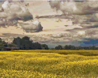 Counted Cross Stitch Pattern Canola Fields and Clouds