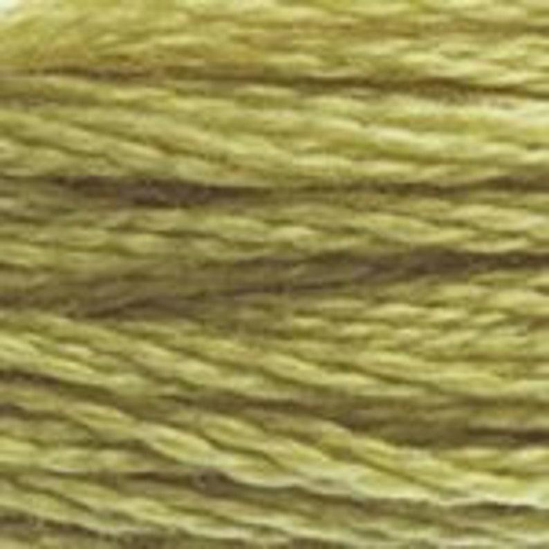 DMC Floss Colour Bundle AUTUMN 25 skeins of 6 Strand Cotton Floss in Various Colours of Autumn Shades Plus a Coloris in Your Palette