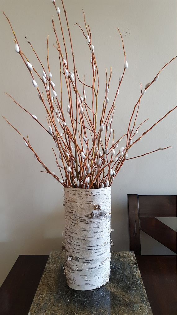 Birch Bark Vase With Fresh Pussy Willow Branches Etsy