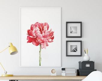 Flower Watercolor Peony - A3 Art Print