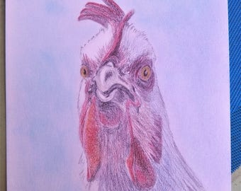 Portrait drawing of a rooster with color pencils