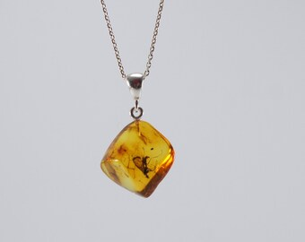 Amber pendant, insect inclusion, clear, cognac teardrop natural amber pendant Certificate 3667
