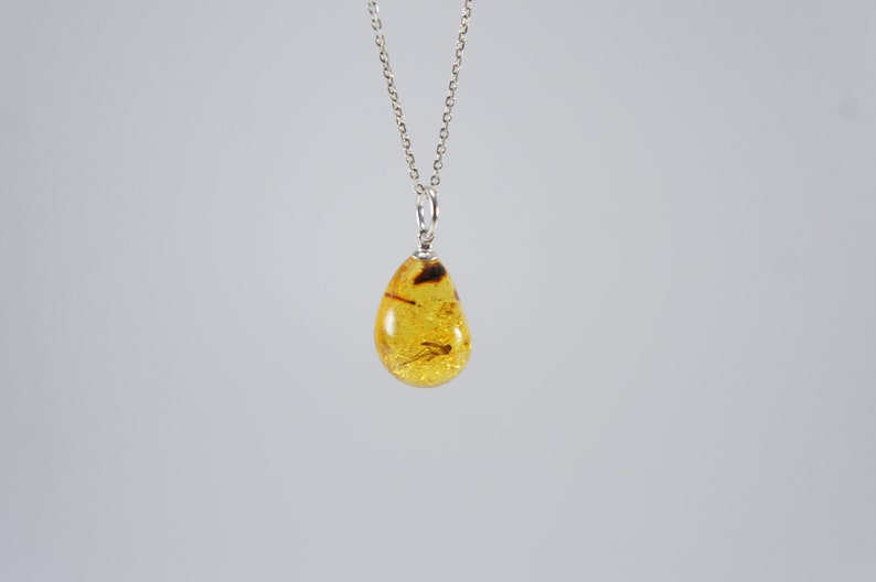 Amber pendant insect inclusion fly bug sunny clear lemon image 0