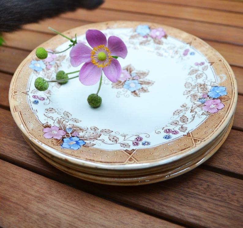 nacre assiette \u00e0 dessert St Amant d\u00e9coration de table,vintage fleurs fran\u00e7ais Lot de 5 Assiettes vintage fran\u00e7ais nacr\u00e9es