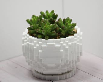 Pixelated 3D Printed Planter for Succulents and Cactus