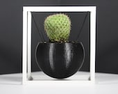 Modern Suspended Sphere in Cube 3D Printed Planter | Black | Gray | White | Wood PLA |