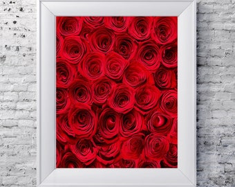 Flower photography, roses, rose, red, red roses, flower print, downloadable art, printable, home decor, office decor, gifts