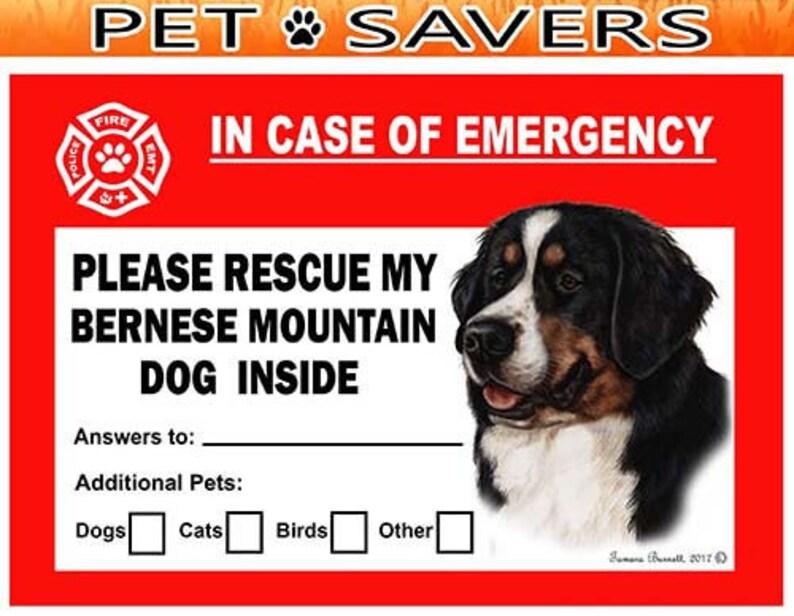 "DOG pet 5.75/"" I LOVE MY MUTT vinyl decal sticker.."