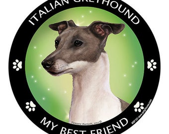 Italian Greyhound Blue My Best Friend Dog Magnet