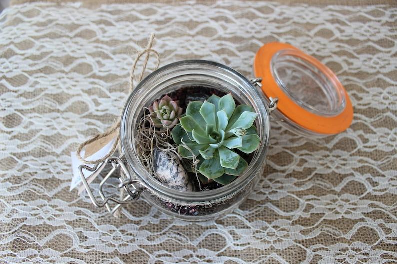 Succulent Terrarium Kilner Jar Succulent Terrarium Succulent Etsy