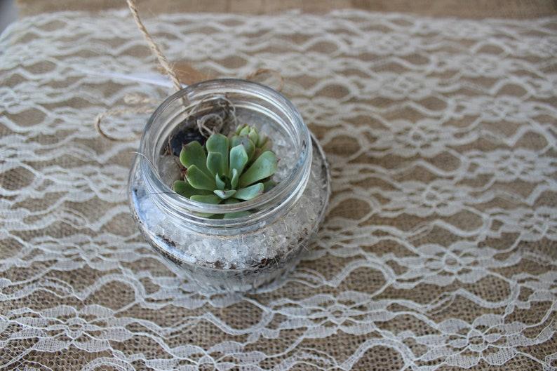 Mini Succulent Terrarium Kilner Jar Terrarium With Succulents Etsy
