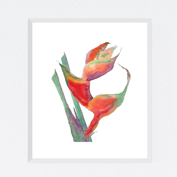 Crazy Heliconia floral art print, nature, flower, tropical, exotic, archival print, botanical art, giclee on paper, contemporary wall art