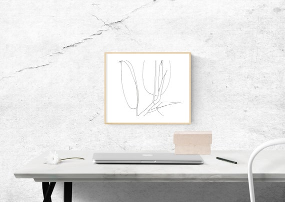Black and White Ficus Elastica, Rubber Plant, botanical art print, nature, minimalist, archival print, giclee on paper, contemporary art