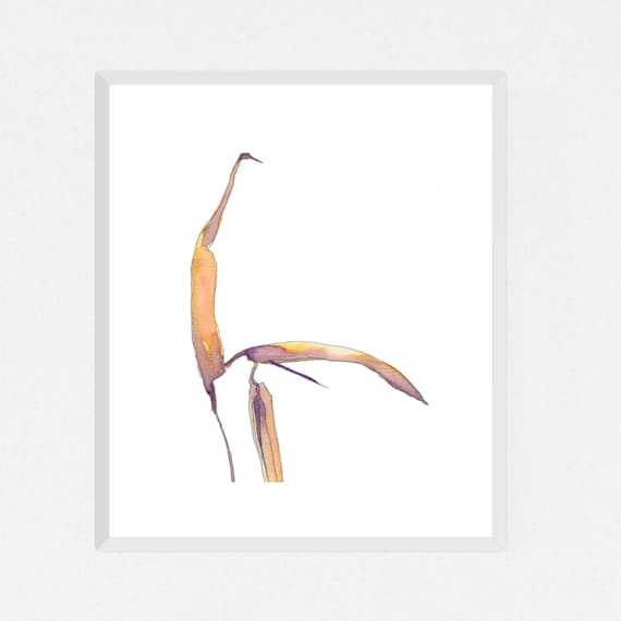 Dying Heliconia #2, floral art print, nature, minimalist, flower, archival print, botanical art, giclee on paper, contemporary wall art
