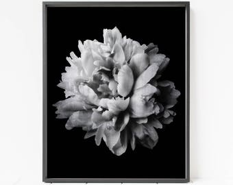 Moody floral print etsy flower print black and white flower printable art peony print flower decor vintage flower wall art moody floral art bedroom wall art mightylinksfo