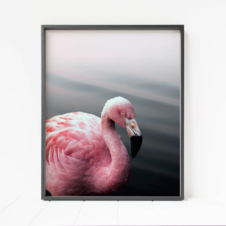 photo regarding Flamingo Printable called flamingo print, flamingo printable wall artwork, fowl images, tropical decor, purple wall artwork, major printable poster, h2o artwork, chook decor