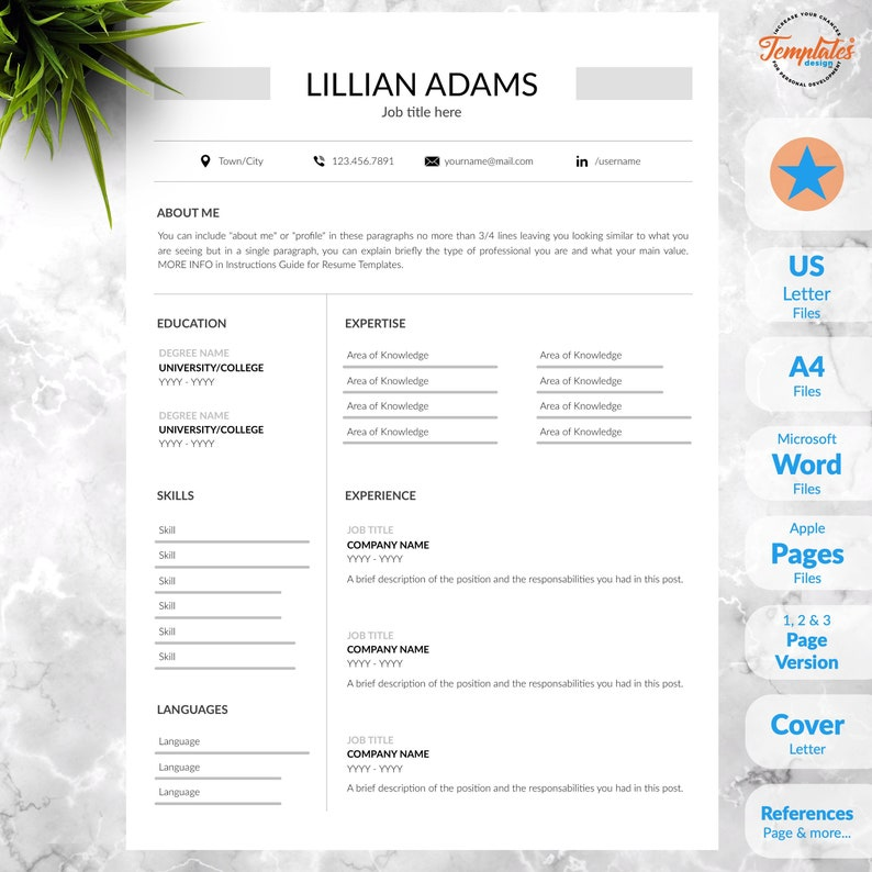 Simple And Standard Resume Template Clean Basic