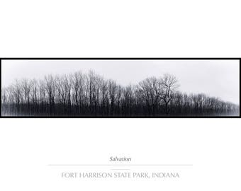 "Rustic Decor, Landscape Photography, Fall Decor, Tree Wall Art, Fine Art Photography, Indiana Panoramic Nature Landscape Print ""Salvation"""