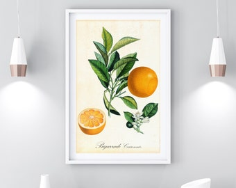5191b274706 Orange Printable Wall Art