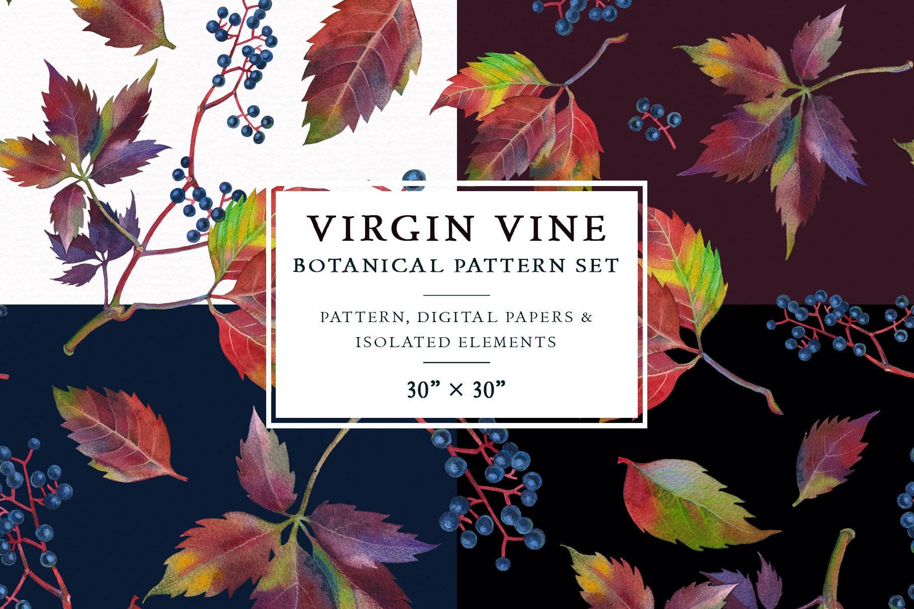 Botanical Digital Paper Clipart Fall Virgin Vine Isolated Etsy