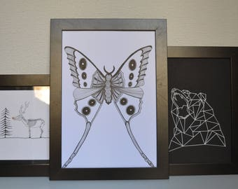 Butterfly black and white poster