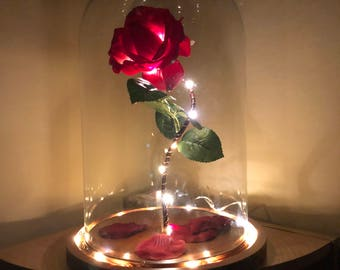 Beauty And The Beast Rose Dome Etsy