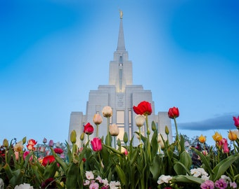 Utah Oquirrh Mountain Temple with tulips