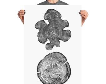 Two Tree Stumps, Tree Rings, ink blot log rings, Black white, tree poster, tree art, log stamp, log print, Tree print, gifts