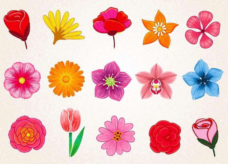 Photos of drawn flowers