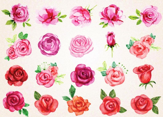 watercolor roses clipart watercolor roses svgpng 300 ppi red etsy