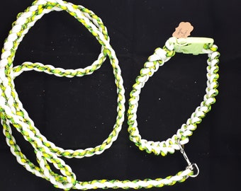 Paracord Leash and Collar Set