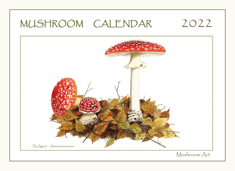 Mushroom wall calendar 2022  from watercolour paintings by image 1