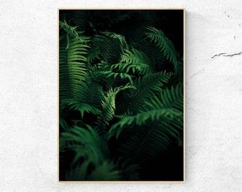 Botanical Print, Leaf Wall Art, Leaves Photography, Botanical Wall Art, Tropical Print, Green Leaf Print, Tropical Leaf Print, Boho Decor