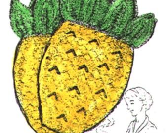 "Crochet ""Pineapple"" Oven Mitts PDF Instructions, Crochet ""Pineapple"" Bar-B-Cue Mitts"