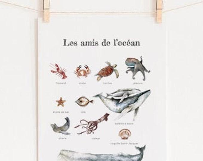 POSTER ocean animals sealife sea decoration child nursery