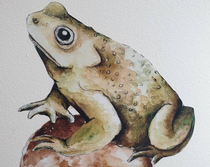 Sticker frog toad, sticker wall forest woodland watercolor decoration room