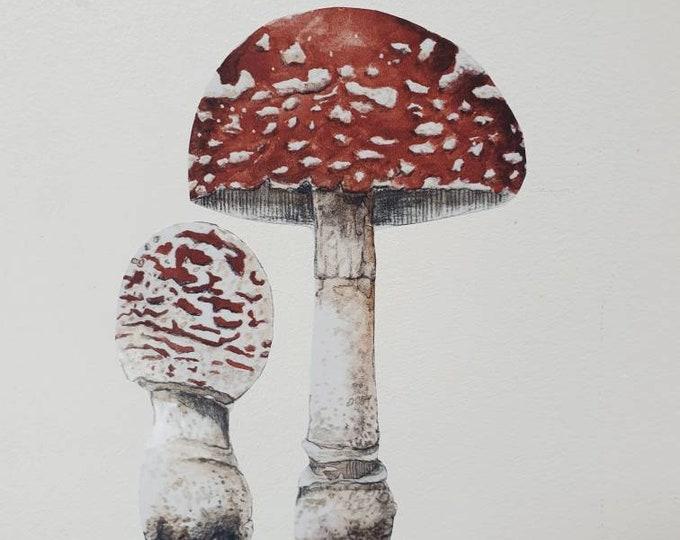 Sticker mushroom, wall sticker forest woodland watercolor decoration room