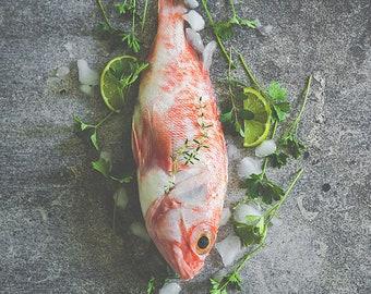 background for food photography - Mod DAKAR