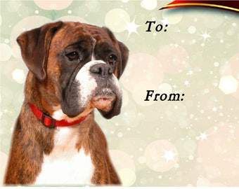 Boxer Dog Gift Labels, Peel Off, Self adhesive, 2 Sheets of 21 Labels, 42 Labels in total