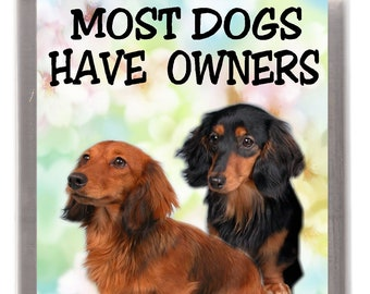 Longhaired Dachshund Fridge Magnet - Most Dogs Have Owners Dachshunds Have Staff. Great Gift for any Dog Lover
