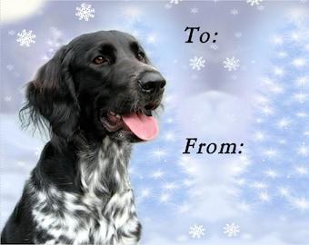 Large Munsterlander Dog Christmas Gift Labels, Peel Off Self adhesive, 2 Sheets of 21 Labels, 42 Labels in total
