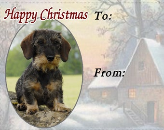 Dachshund (Wirehaired) Dog Christmas Gift Labels, Peel Off Self adhesive, 2 Sheets of 21 Labels, 42 Labels in total