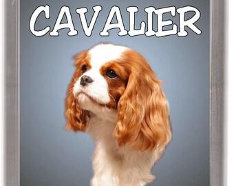 """Cavalier King Charles Spaniel Fridge Magnet /""""A VERY SPOILT CAVALIER LIVES HERE/"""""""