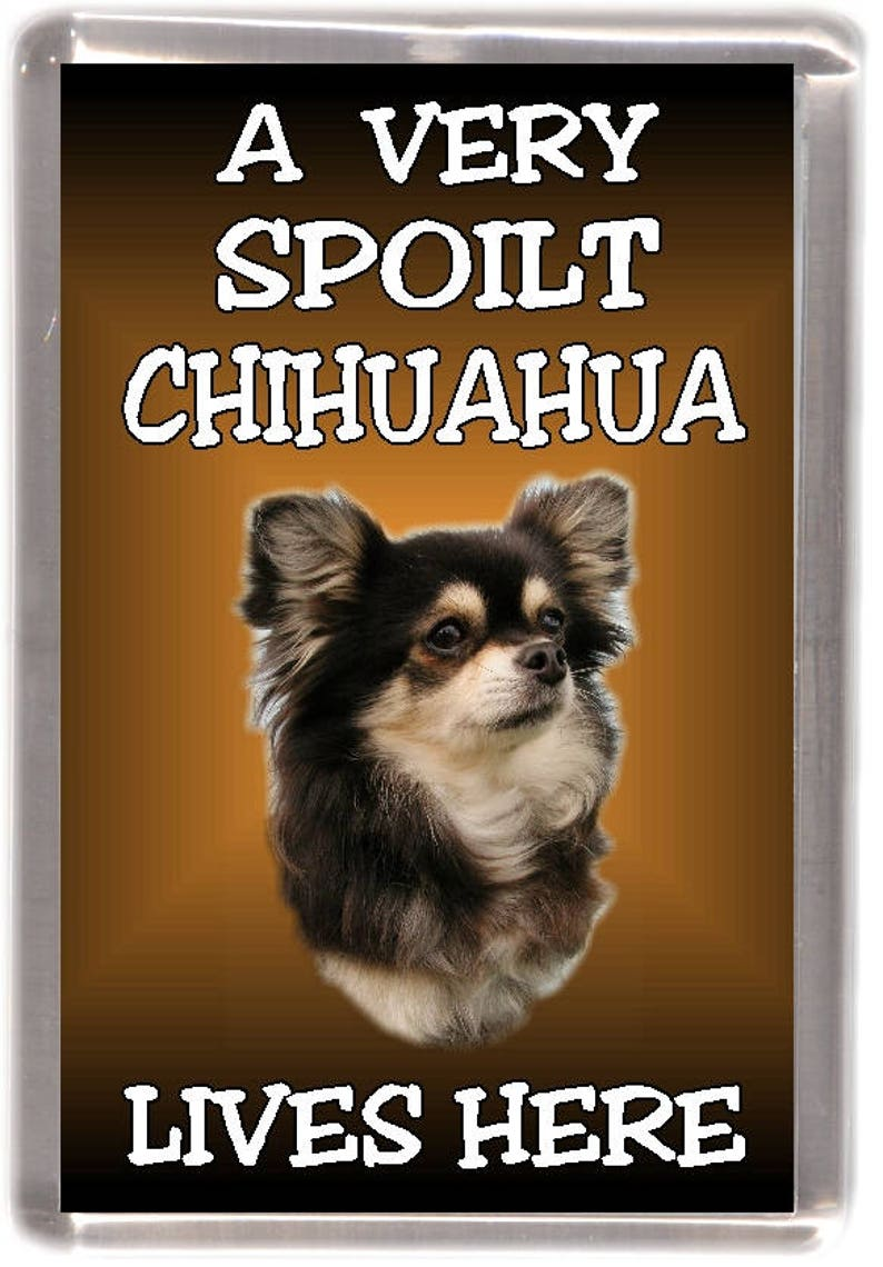 Chihuahua Dog Gift Wrapping Paper No 2 By Starprint
