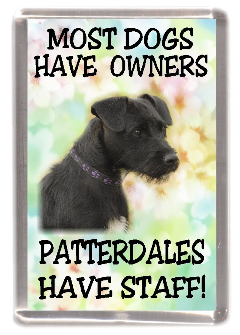 """Manchesters Have Staff/"""" Manchester Terrier Dog Fridge Magnet /""""Most Dogs ..."""