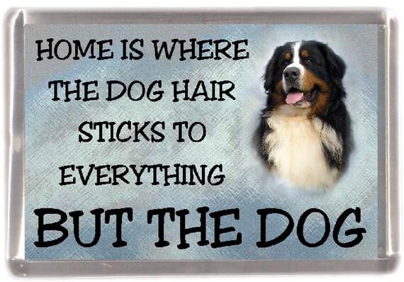 I/'M NOT JUST A DOG PERSON I/'M A BERNESE MUMMY FRIDGE MAGNET GIFT DOG